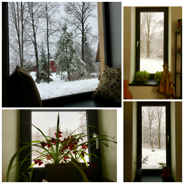 windowcollage
