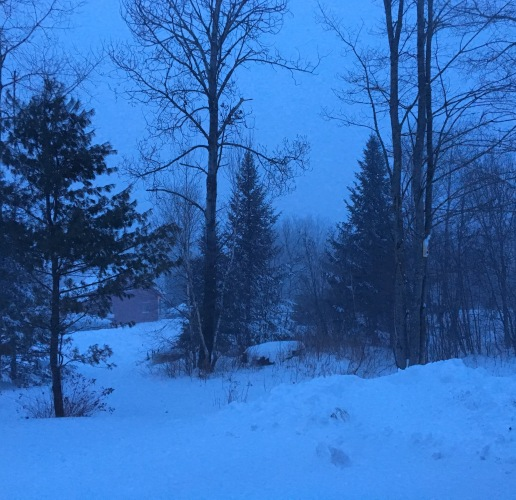 Vermont snow at dusk