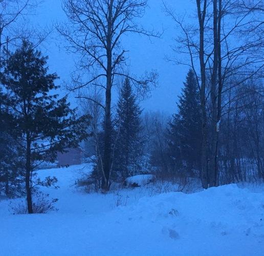 Vermont snow at dusk