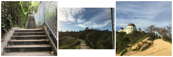 Los Feliz stair hike to Griffith Park