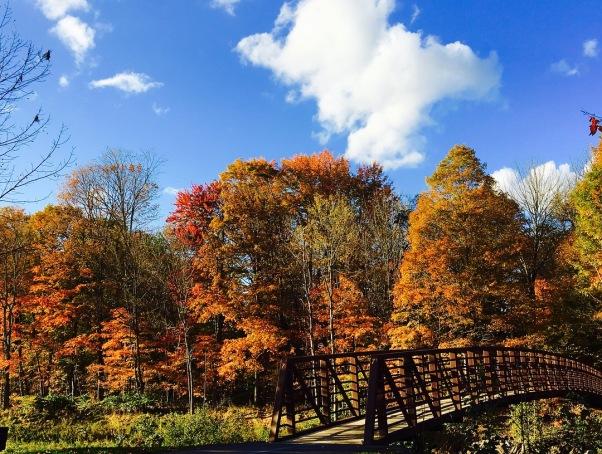Stowe Recreation Path