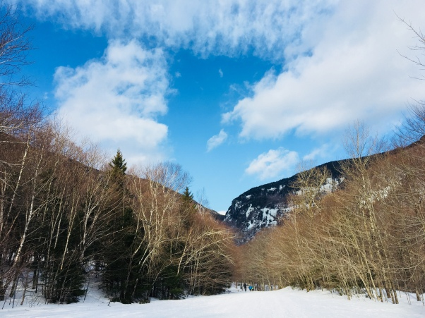 Mount Mansfield, Stowe, Vermont