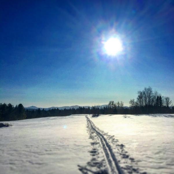 ski tracks across a snowy Vermont field