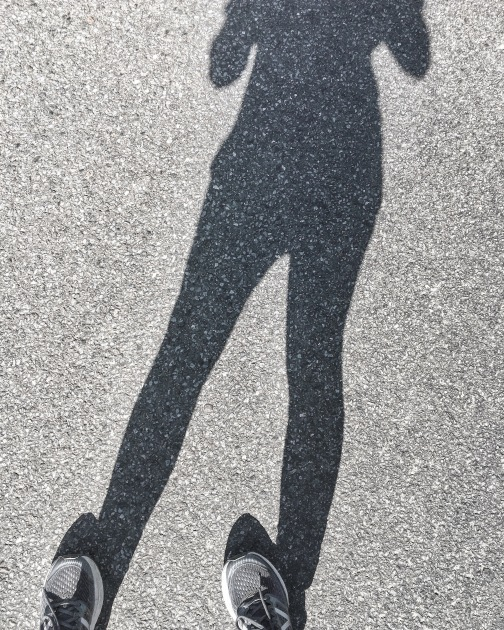 shadow on the pavement