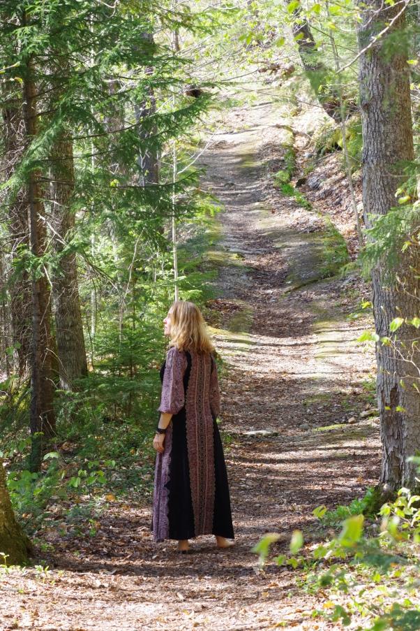woods walk in Vermont