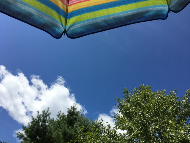 summer awning under a blue sky