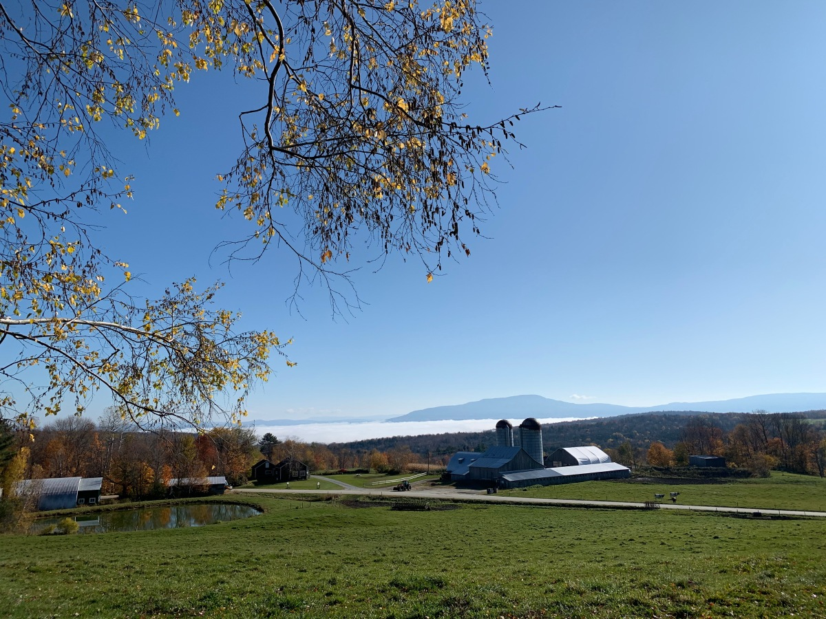 Vermont farm in the morning