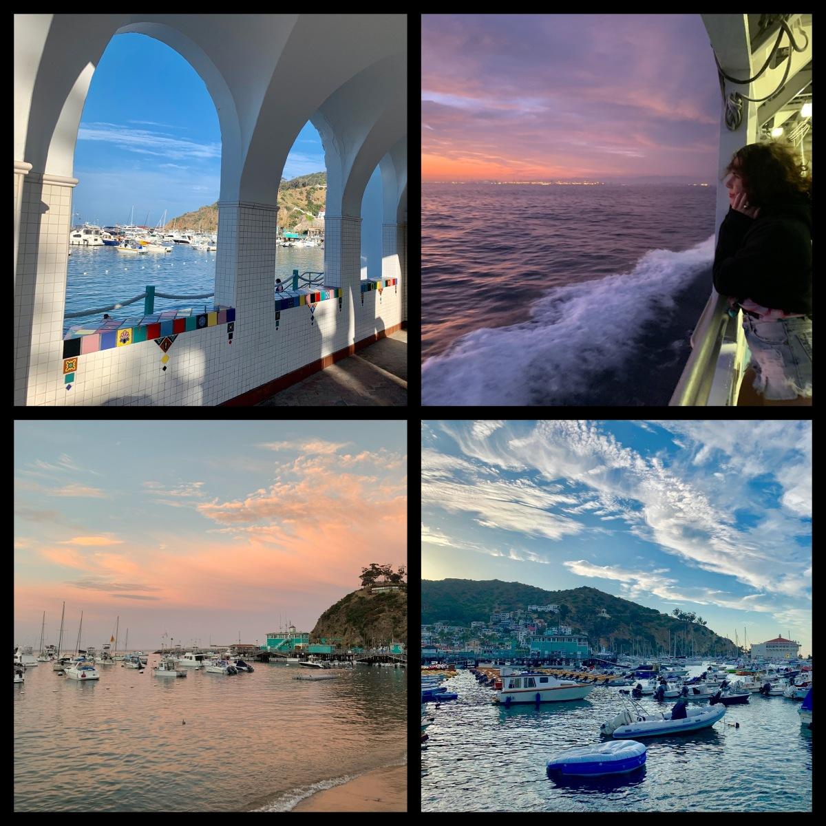Catalina Scenes