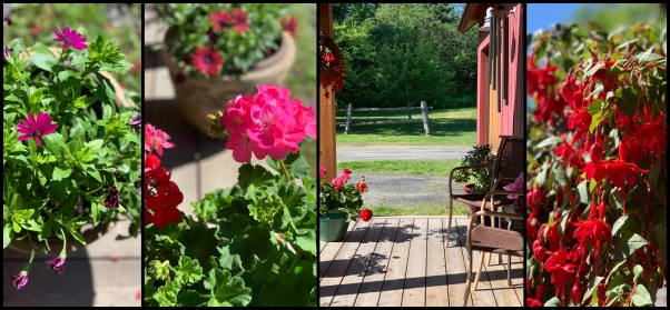 porch collage